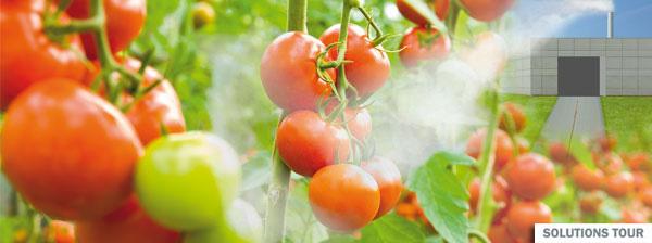 Stop No.60:改善温室栽培植物生长